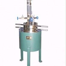 0.1升高压釜-实验室反应釜-磁力搅拌反应釜