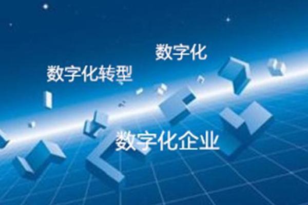 关于数字化转型:大企业转体系,小企业转工具 ()